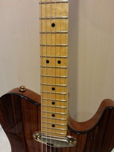 Fender Telecaster Select_140427