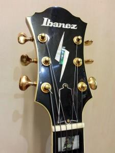Ibanez PM 120_102613